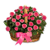 Send Flower to Bangalore