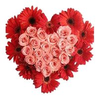 Immediate Flower Delivery of 24 Pink Roses 10 Red Gerbera Heart in Bangalore