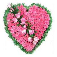 Valentines Day Flowers to Bangalore : Pink Roses Heart