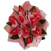 Send Online Anthurium Bouquet 12 Flowers to Bangalore