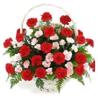 Online Red Pink Carnation Basket 40 Flowers Delivery in Bangalore