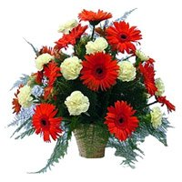 Send New Born Flowers to Bangalore
