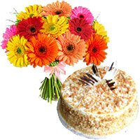 Mix Gerbera and Butter Scotch Cakes to Bengaluru