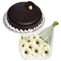 Flowers to Bengaluru - White Gerbera Chocolate Truffle Cake