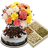 Gift Delivery In Bangalore Send 12 Mix Carnation 1 2 Kg Black Forest