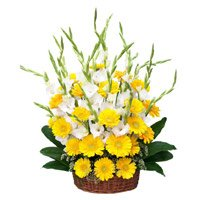 Send Flowers to Bangalore : Gerbera Glad Arrangement