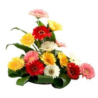 Deliver Online Mixed Flowers to Bangalore
