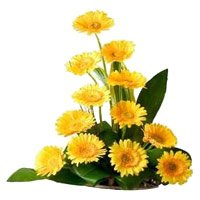 Place Order Online Flower Delivery in Bangalore