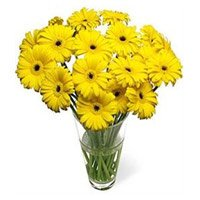 Cheapest online flower delivery in Bangalore  : Red Gerbera Bouquet
