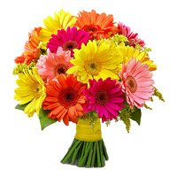 Valentine Flowers to Bangalore : Mix Gerbera Bouquet