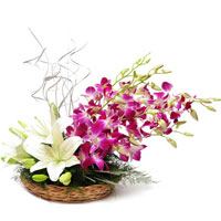 Fresh Flowers Delivery in Bangalore for White Glads Orchids Basket 15 Flowers