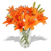 Gift flowers online Bangalore
