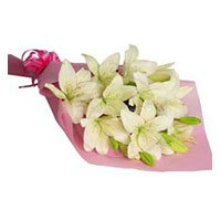 Valentine's Day Flowers to Bengaluru :  Pink White Lily