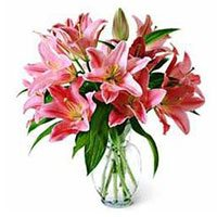 Cheapest Flower delivery in Bangalore for Pink Lily Vase 15 Flower Stems