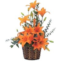 Send Online Orange Lily Arrangement 9 Flower to Bangalore