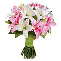 Valentines Day Flower Delivery in Bangalore :  Pink White Lily