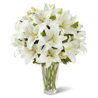 Online Flower Delivery in Bangalore :  White Lily