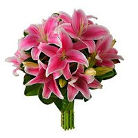 Valentines Day Flowers to Bangalore :  Pink Lily to Bangalore