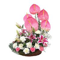 Online Flower Delivery in Bangalore - Anthurium Basket