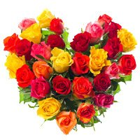 Best Valentine's Day Flowers to Bangalore : Roses in Bangalore