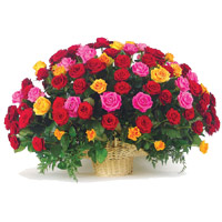 Online Flowers to Bangalore : Hug Day Gifts Delivery in Navi Bangalore
