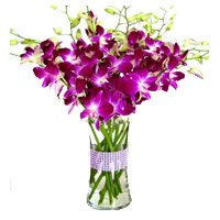 Send Flowers to Bangalore Online