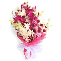 Orchids Flower Delivery in Bangalore