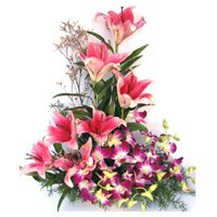 Best Flowers in Bangalore