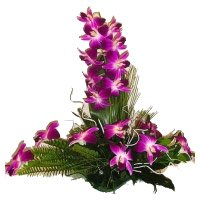 Place Order for 6 Purple Orchids Flower Arrangement to Bangalore
