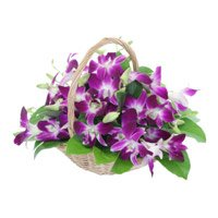 Flower Delivery in Bangalore - Orchid Basket