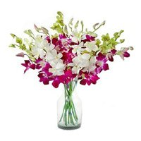 Flower Delivery in Bangalore. Purple White Orchid in Vase 10 Flowers to Bangalore Domlur