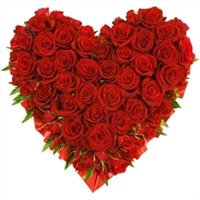 Valentine's Day Flowers Delivery in Bangalore Basaveswaranagar