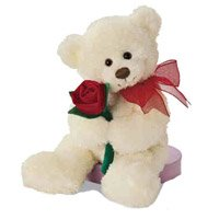 Birthday Gift Delivery in Bangalore Shanthinagar. Teddy Bear with 1 Rose to Bangalore Shanthinagar