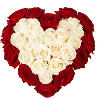 Send Red White Roses Heart 50 Flowers to Bangalore