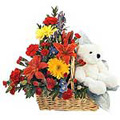 Send Flowers to Bangalore, Rakhi Gifts to Bangalore