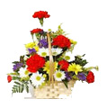 Send Flowers to Bangalore : Birthday Flowers to Bangalore