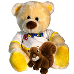Soft Toys to Bangalore : Gifts to Gandhinagar Bangalore